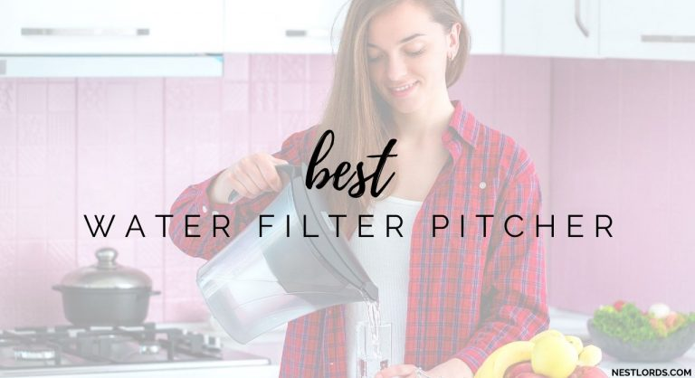Best Water Filter Pitcher in 2021