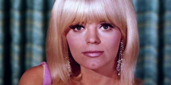 Carol Wayne – Biography 2021