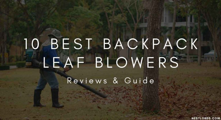 10 Best Backpack Leaf Blowers 2021 – Reviews & Guide