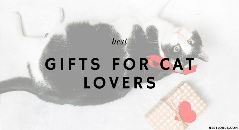 The 36 Best, Unique Gifts for Cat Lovers in 2021