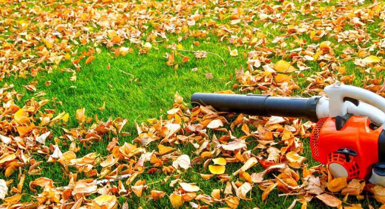 Top 6 Best Leaf Vacuum Mulchers of 2021 – Reviews