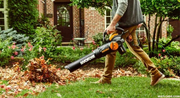 12 Best Leaf Blower with Vacuums and Mulcher Options in 2021