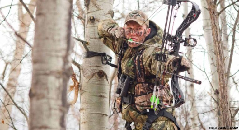 5 Best Tree Stand Harness For Safety Hunting in 2021