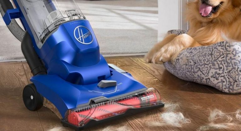 8 Best Vacuums for Pet Hair and Hardwood Floors in 2021