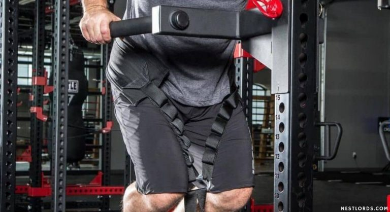 Best Dip Belt for Weights – Tested & Reviewed in 2021