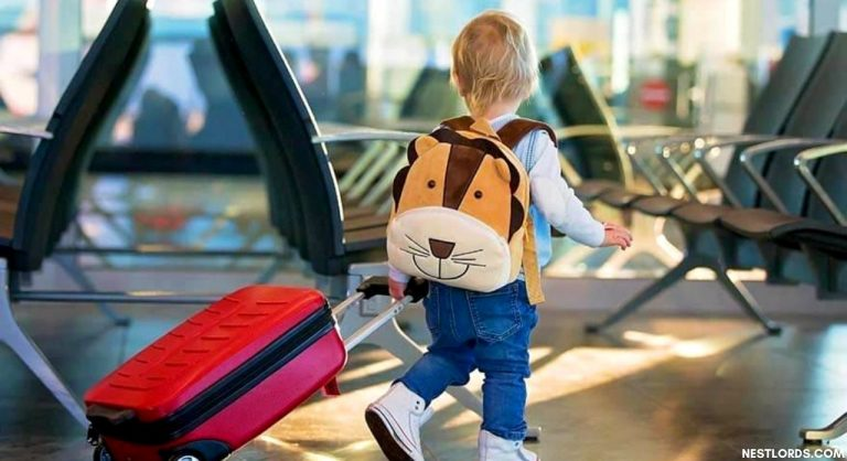 The 10 Best Kids' Luggage in 2021: Review & Guide
