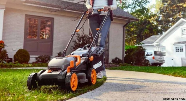 Best Lawn Mower in 2021 – All You Need to Know