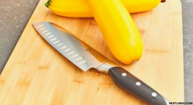 Best Santoku Knife Review: Make your Money Worthy