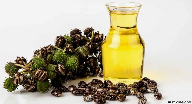 The Best Castor Oil for Hair Growth & Thickness (Jan. 2021)