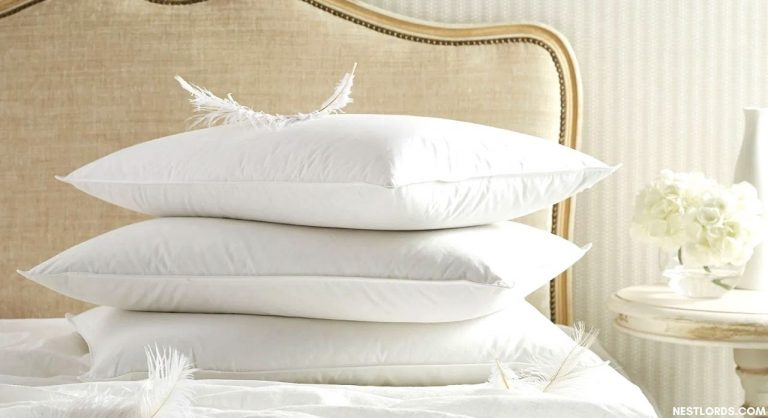 The Best Feather Pillow in 2021: Reviews & Buying Guide