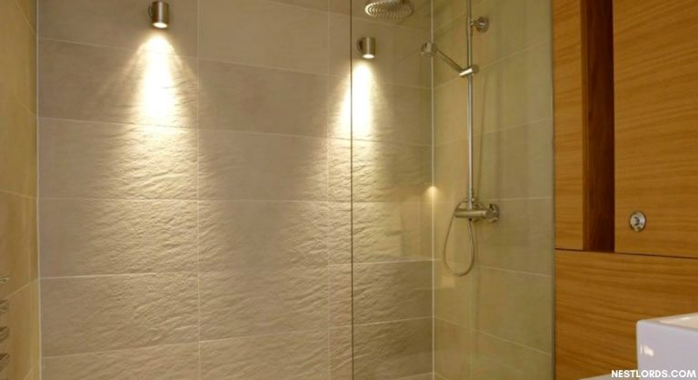 The Best Shower Light – Check Our Top 9 Picks [2021]