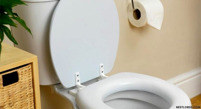 The Best Soft Toilet Seat in 2021: Reviews